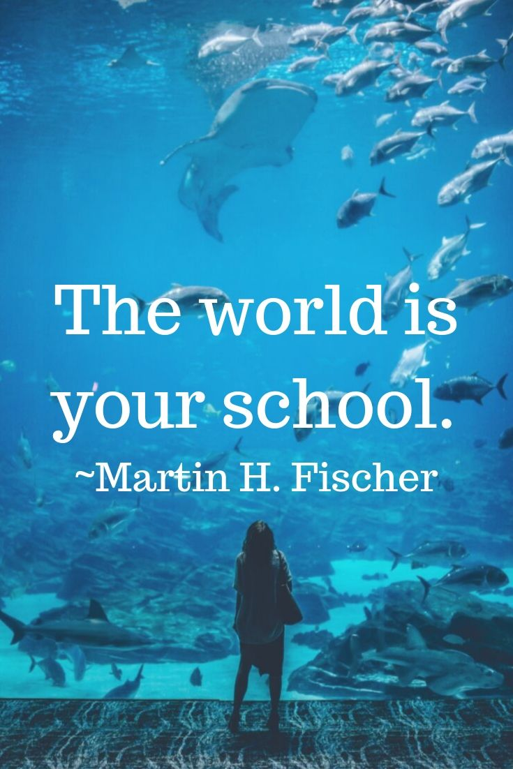 The world is your school. ~Martin H. Fischer