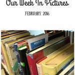 Our Week In Pictures – February 2016