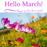 Hello, March – What To Watch, Do and Cook This Month
