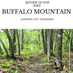 Buffalo Mountain Hike Review