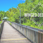 Visit Winged Deer Park
