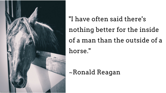 I have often said there's nothing better for the inside of a man than the outside of a horse. - Ronald Reagan