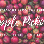 Apple Picking Orchards