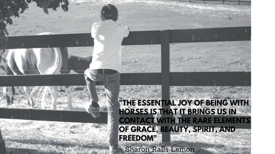 The essential joy of being with horses is that it brings us in contact with the rare elements of grace, beauty, spirit, and freedom. - Sharon Ralls Lemon