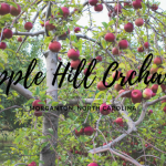 Apple Hill Orchard in Morganton North Carolina