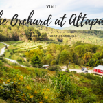 Visit AltaPass Apple Orchard in Spruce Pine