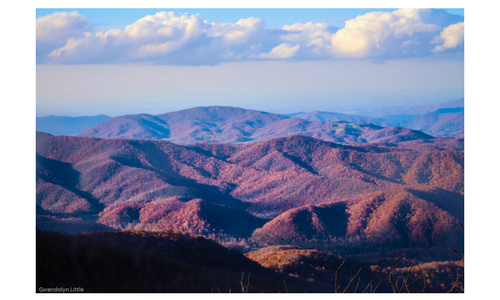 Roan Mountain in the Fall - Overlook on the way to Carver's Gap.