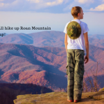 Fall Hike on Roan Mountain