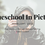 Homeschool Month In Pictures – February 2018