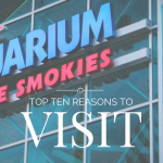 Top Ten Reasons To Visit Ripley's Aquarium