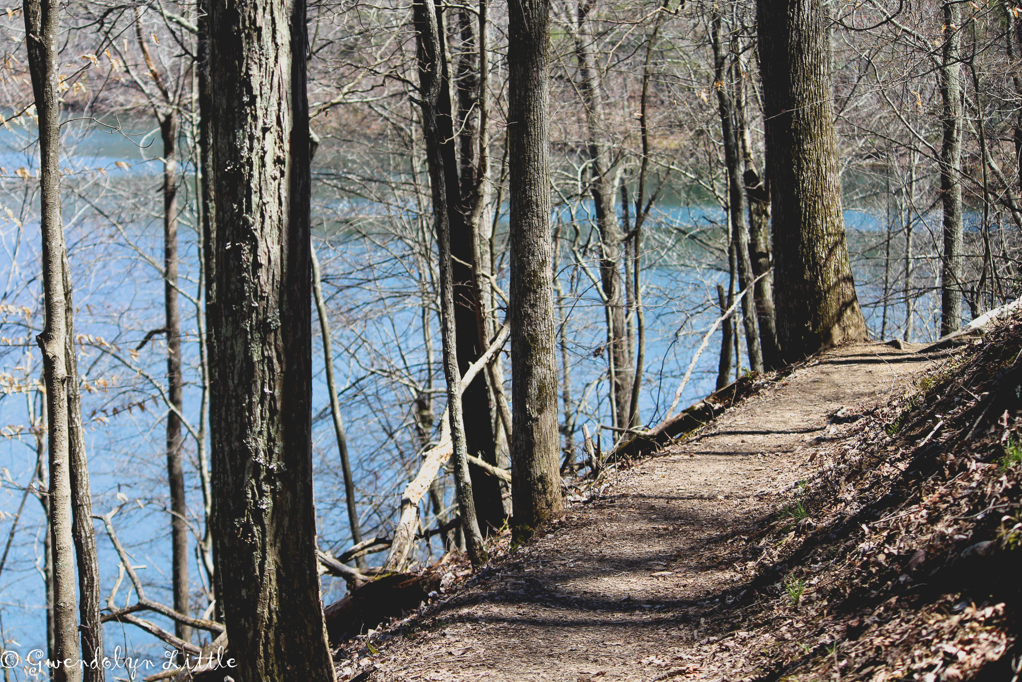 Lakeside Trail at Bays Mountain