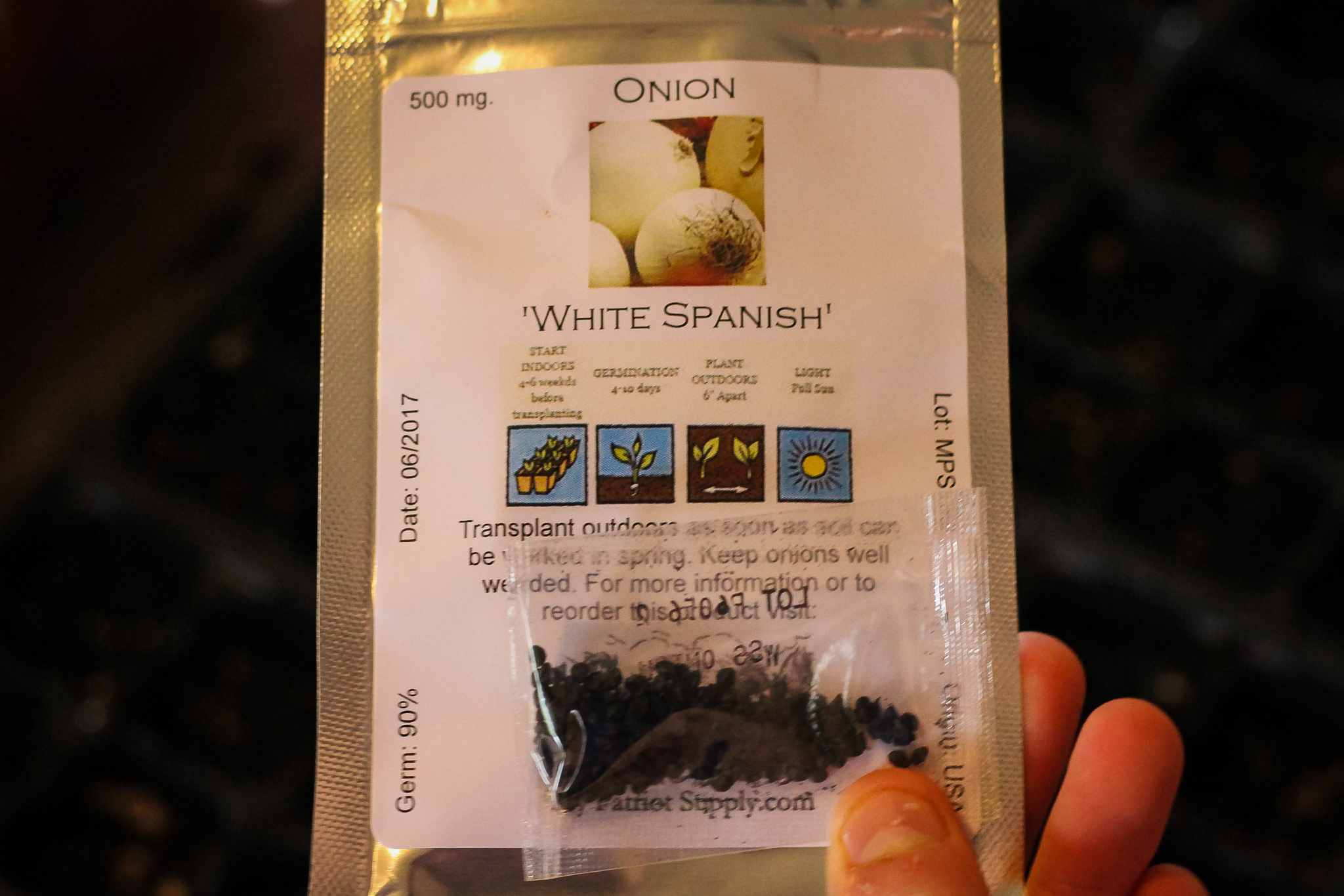 White Spanish Onion Seeds