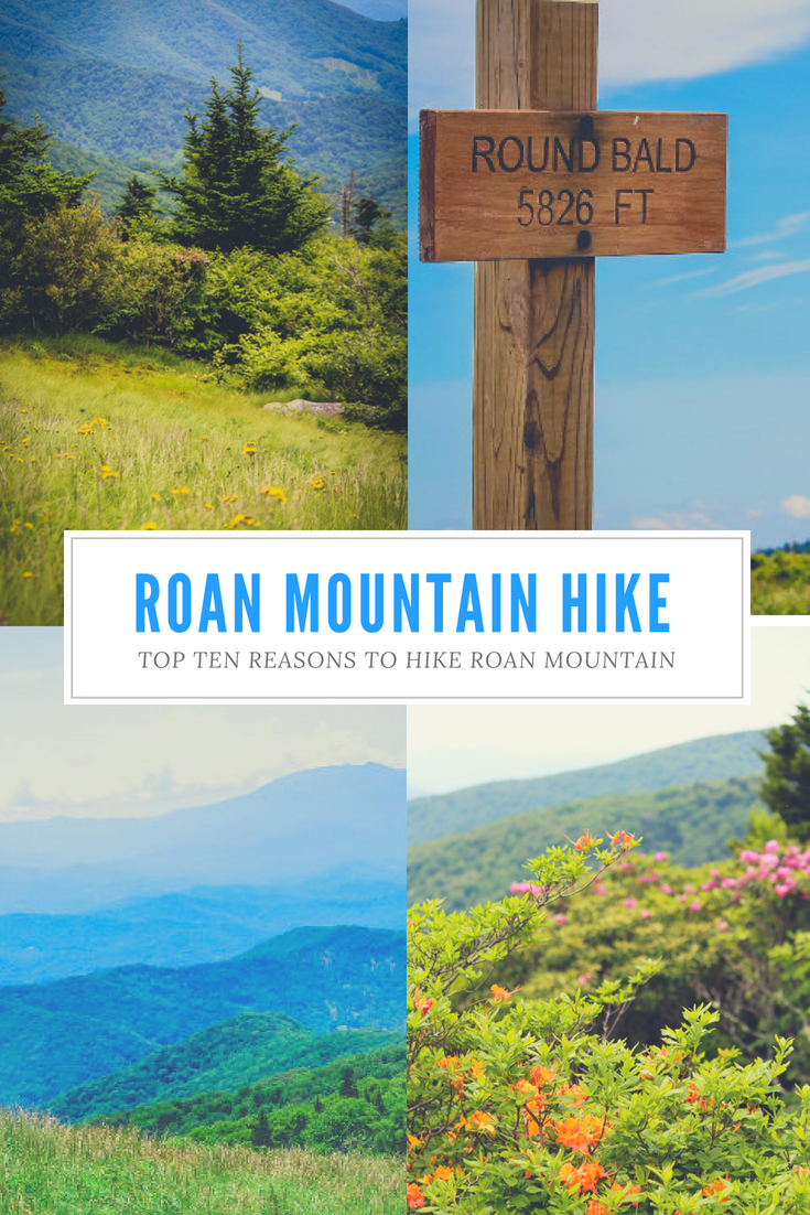 Top Ten Reasons To Hike Roan Mountain