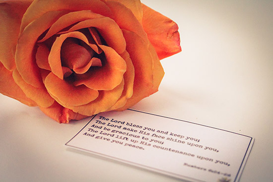 Rose and Scripture Card
