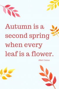 Fall Quote Every Leaf is a flower