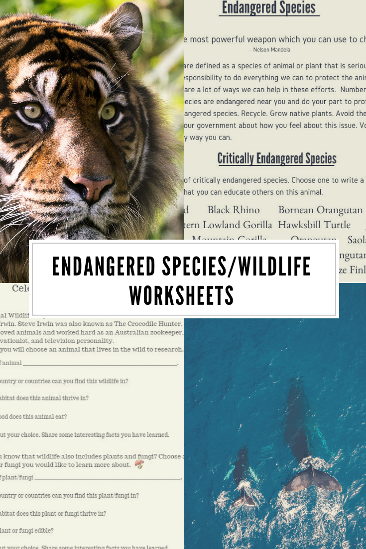 Wildlife Endangered Species Printable Worksheets