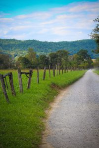 Cade's Cove Loop in Smoky Mountains National Park