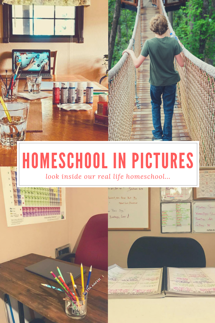 How We Homeschool Photos