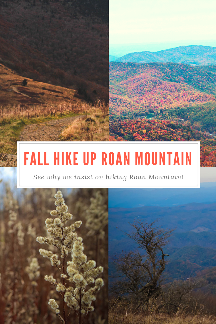 Roan Mountain Fall Hike