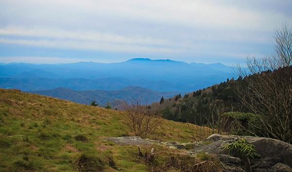 Roan Mountain Trail To The Balds