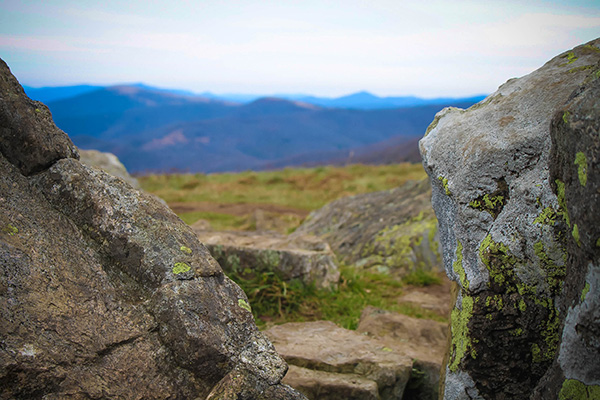 Rocks on Roan Mountain