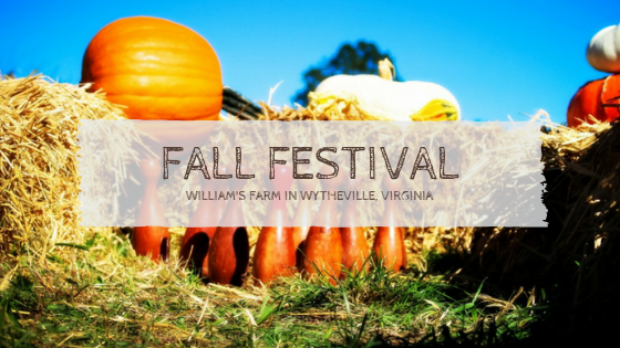 Fall Festival in Wytheville Virginia