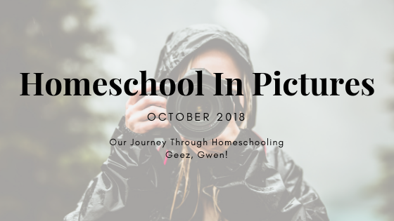 Homeschooling In Pictures Series