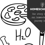 Our Story of Homeschooling – Why Did We Begin