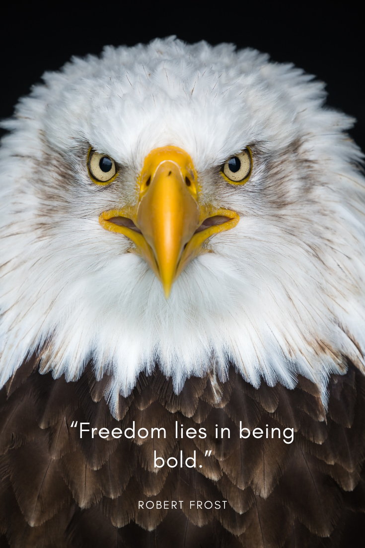 Freedom Quote by Robert Frost