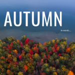Autumn In Words – Falling In Love With Fall