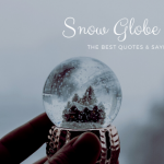 Snow Globe Quotes and Sayings