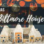 Christmas at Biltmore House Plus A Trip To Their Winery