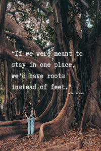 Quotes For Explorers