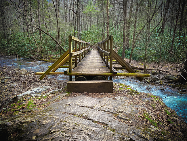 Bridge on the trail to Laurel Fork Falls