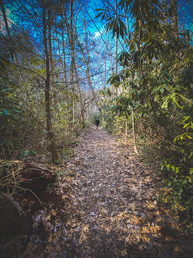 Hiking Trail to Laurel Falls in Tennessee