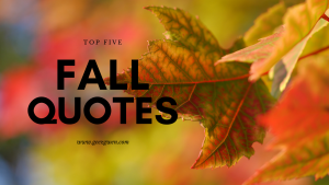Top Five Fall Quotes to inspire