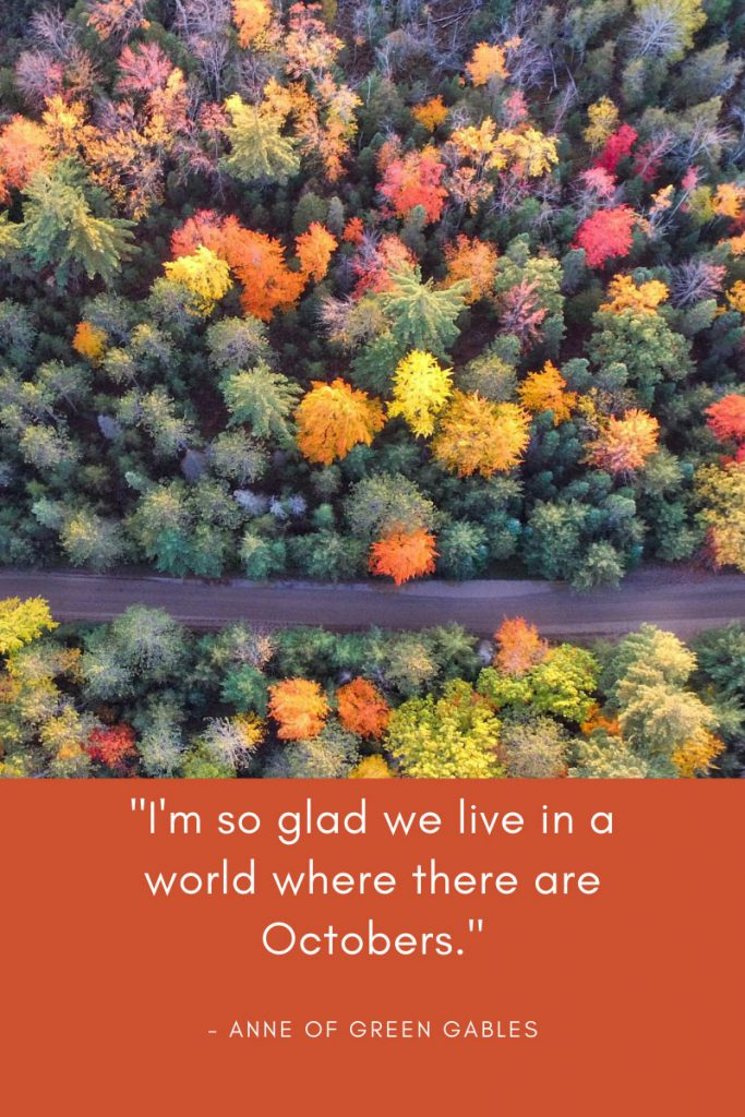 "Fall Quote from Anne of Green Gables - ""I'm so glad we live in a world where there are Octobers."""