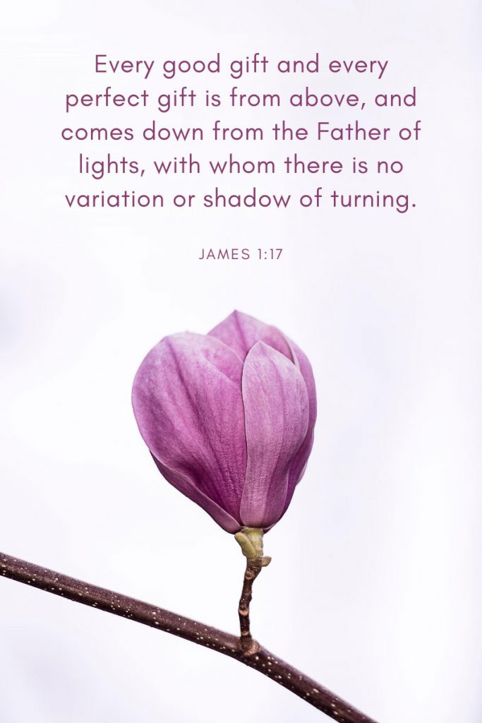 Every good gift and every perfect gift is from above, and comes down from the Father of lights, with whom there is no variation or shadow of turning.     ~     James 1:17