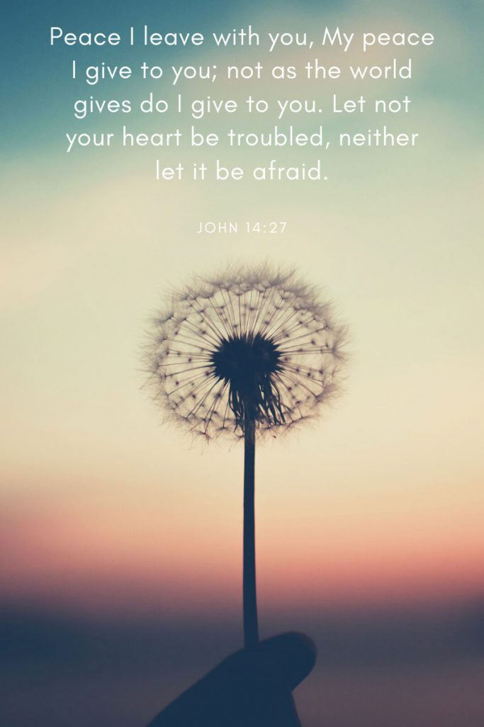 Peace I leave with you, My peace I give to you; not as the world gives do I give to you. Let not your heart be troubled, neither let it be afraid.     ~ John 14:27