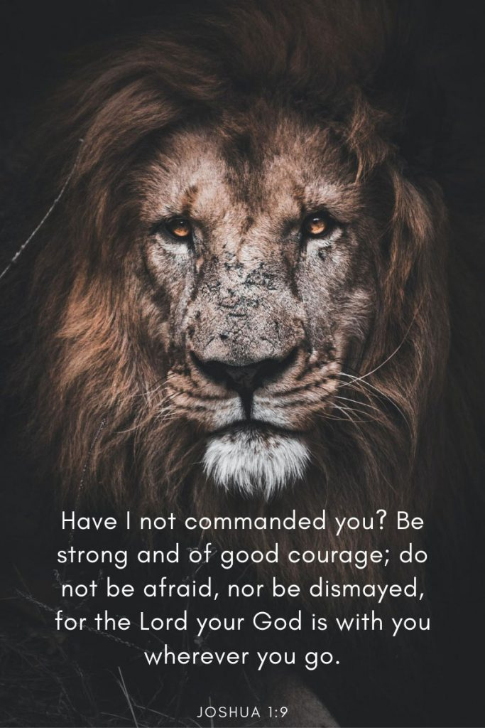 Have I not commanded you? Be strong and of good courage; do not be afraid, nor be dismayed, for the Lord your God is with you wherever you go.     ~ Joshua 1:9