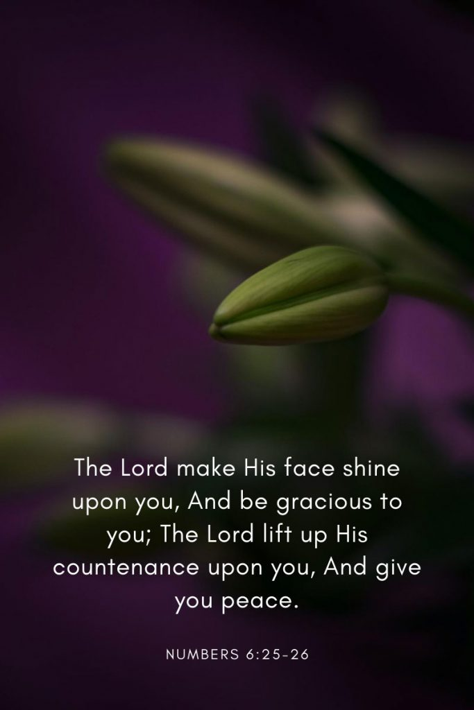 The Lord make His face shine upon you, And be gracious to you; The Lord lift up His countenance upon you, And give you peace.     ~ Numbers 6:25-26