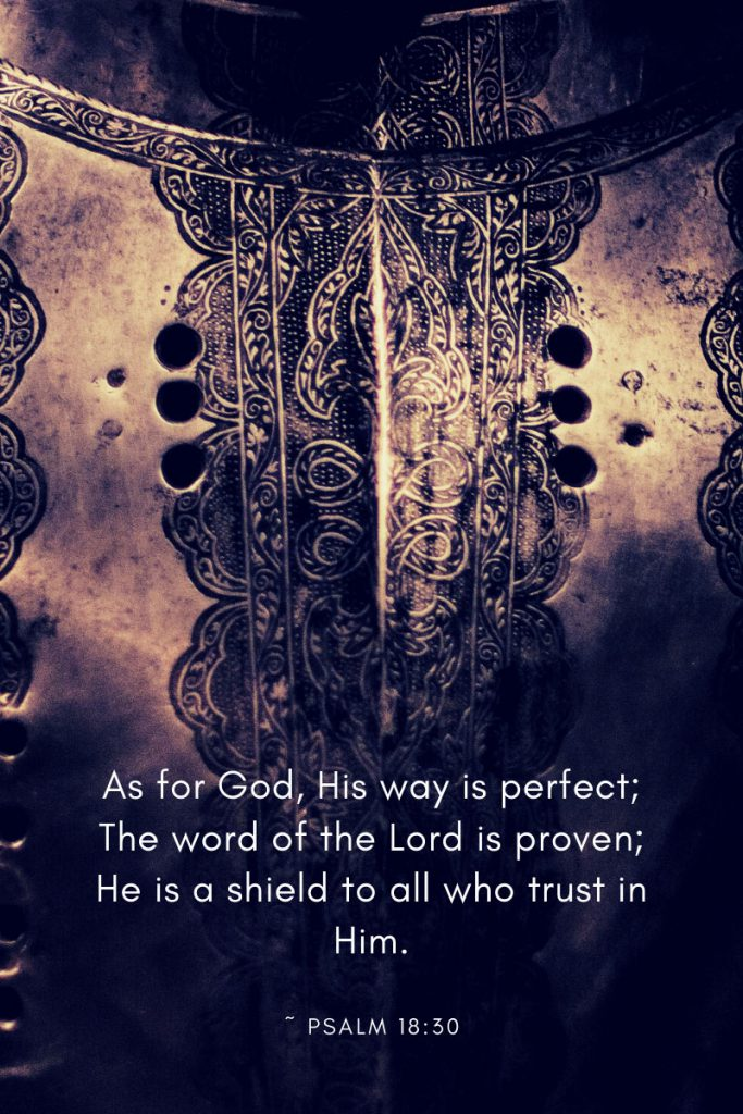 As for God, His way is perfect; The word of the Lord is proven; He is a shield to all who trust in Him.     ~ Psalm 18:30