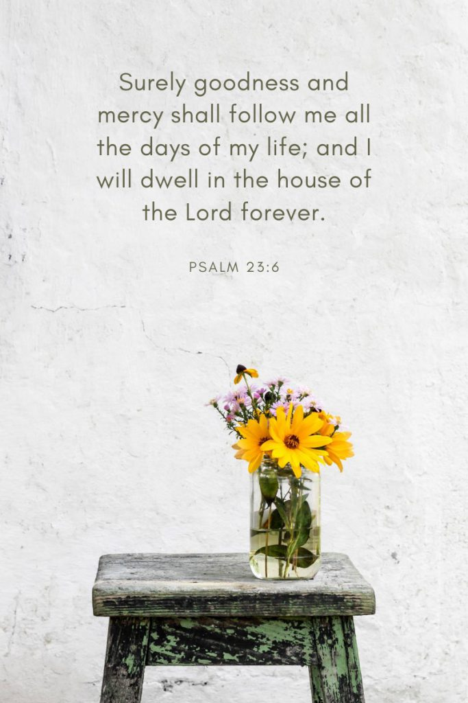 Surely goodness and mercy shall follow me all the days of my life; and I will dwell in the house of the Lord forever.     ~Psalm 23:6