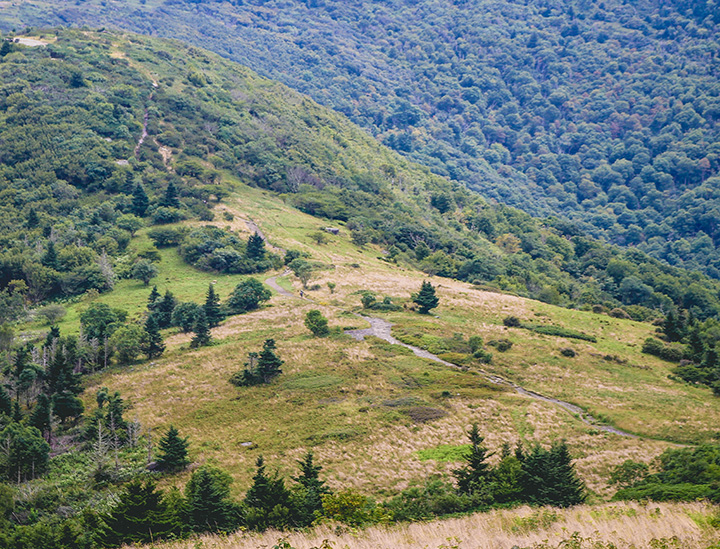 Roan Mountain - trail to second bald.