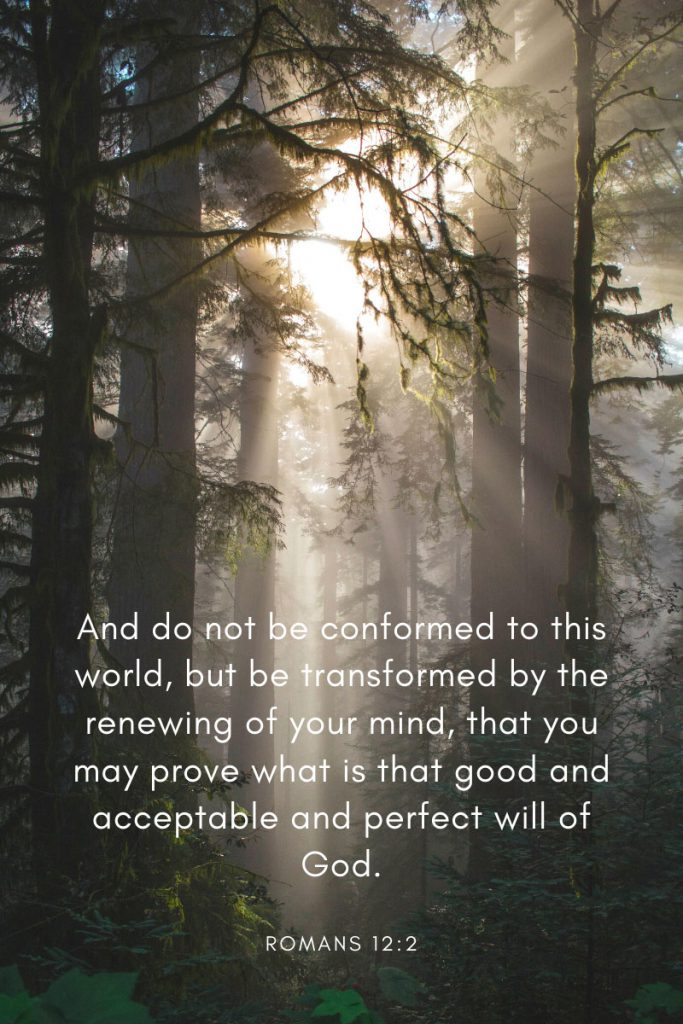 And do not be conformed to this world, but be transformed by the renewing of your mind, that you may prove what is that good and acceptable and perfect will of God.     ~ Romans 12:2