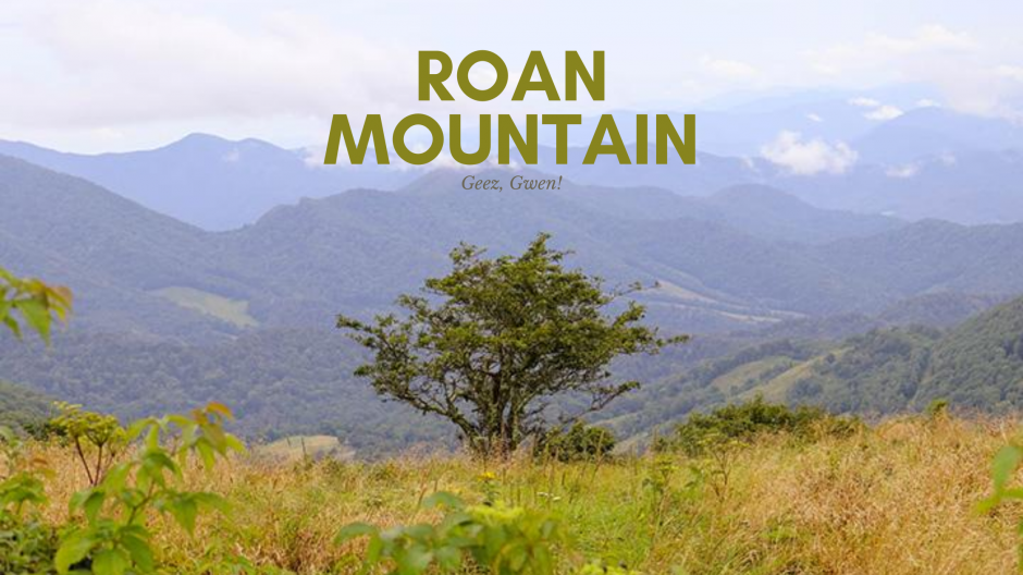 Roan Mountain Hike from Carvers Gap