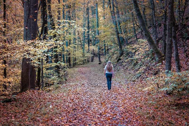 Walking the Spillway Trail in Bristol Tennessee - Fall Color