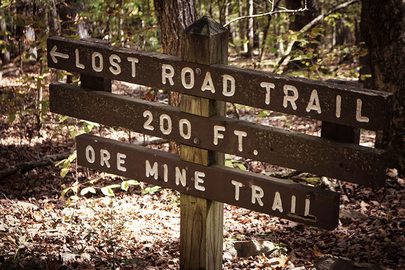 Panther Creek State Park offers over 17 different hiking trails totaling thirty miles of trails ranging from moderate to difficult.