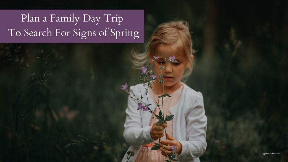 Plan A Family Day Trip