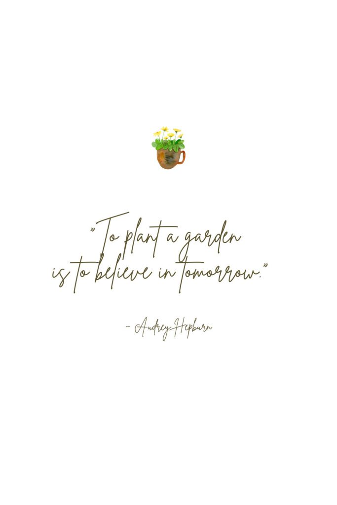 """Spring Quote - """"To plant a garden is to believe in tomorrow."""" - Audrey Hepburn"""